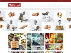 MSL Teknoloji Websitesi Tasarımı