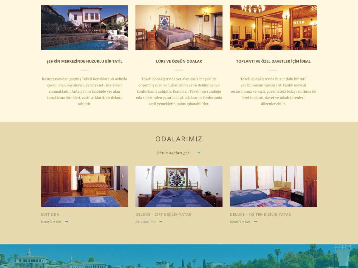Ali Coşkun - Tekeli Konakları Websitesi Tasarımı
